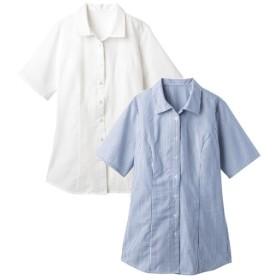 2枚組半袖ハマカラーシャツ(形態安定。抗菌防臭)(もっとゆったりバスト) (大きいサイズレディース)ブラウス
