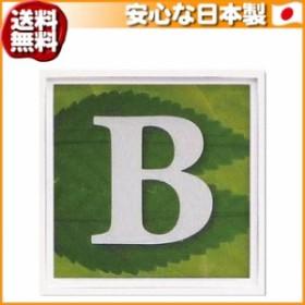(送料無料)ユーパワー アルファベット アートフレーム グリーン B AL-01202-B