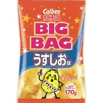 カルビー ポテトチップス ビッグバッグ うすしお味 170g