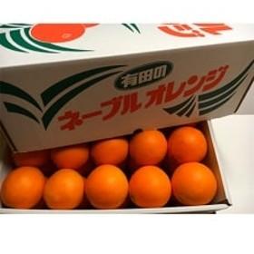 こだわりの国産ネーブルオレンジ7kg