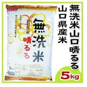 山口県産米 / 無洗米 山口晴るる 5kg /お米:農協直販
