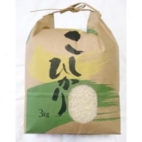 2019年8月下旬から出荷【2019年産】高知県産 コシヒカリ約3kg