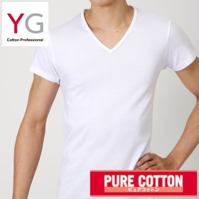 GUNZE グンゼ YG(ワイジー) VネックTシャツ(メンズ)【まとめ買い対象】 ホワイト LL