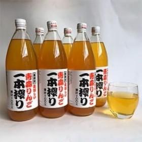 一本搾り(りんごジュース)1L×6本_A304