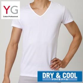 GUNZE グンゼ YG(ワイジー) 【DRY & COOL】VネックTシャツ(メンズ) ブラック LL