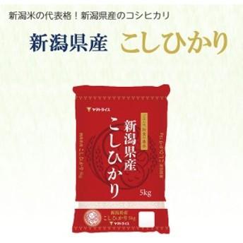 <碧南工場直送> 新潟県産コシヒカリ 5kg H074-058