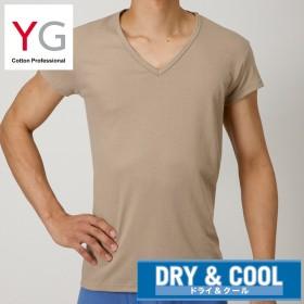 GUNZE グンゼ YG(ワイジー) 【DRY&COOL】VネックTシャツ(短袖)(汗取り付)(メンズ) ホワイト L