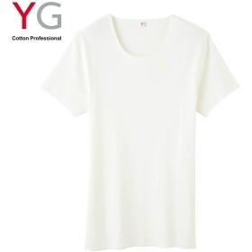 GUNZE グンゼ YG(ワイジー) クルーネックTシャツ(メンズ) オフホワイト L