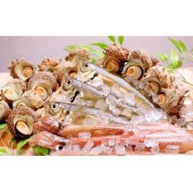 日本海から鮮魚セット