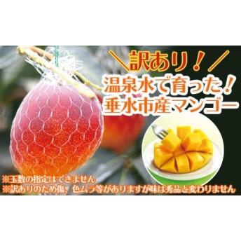 天然温泉水【財宝】で栽培!訳あり完熟マンゴー