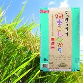 阿東こしひかり(無洗米5kg)