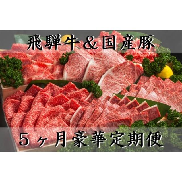 【5ヶ月定期便】5等級飛騨牛と国産豚セット