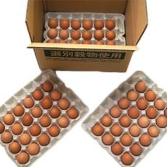 やまぶき卵 72個入り