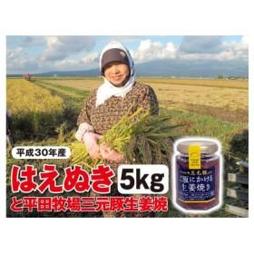 【平成30年産】 庄内産米はえぬき 5kgと平田牧場三元豚「ご飯にかける生姜焼き」1個  SI