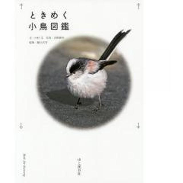 ときめく小鳥図鑑/中村文/吉野俊幸/樋口広芳
