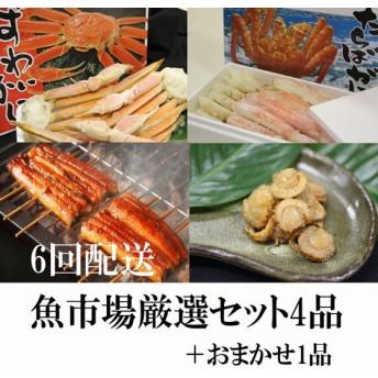 魚市場厳選セットC-3【6ヶ月連続お届け定期便】