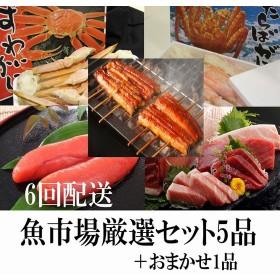 魚市場厳選セットB-3【6ヶ月連続お届け定期便】