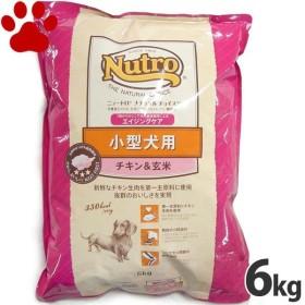 【61】 [正規品] ナチュラルチョイス 小型犬用 エイジングケア チキン&玄米 6kg ニュートロ シニア犬用(7歳以上)  エイジングケア 高齢犬