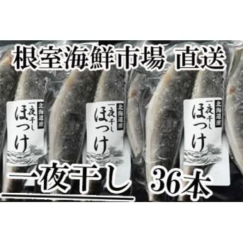 丸干しほっけ(一夜干し)3尾入×12P 根室海鮮市場[直送]