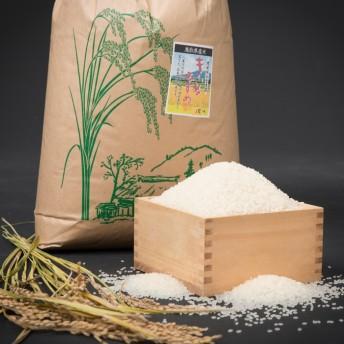 お米 きぬむすめ(15kg)(15kg×1袋)