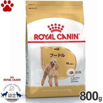 【9】 [正規品] ロイヤルカナン 犬ドライ プードル 成犬用(10か月以上) 800g 犬種別 ドッグフード ドライ ロイカナ BHN