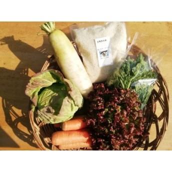 旬の無農薬野菜とアイガモ農法米のセット