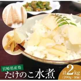 宮崎県産たけのこ水煮(10袋)