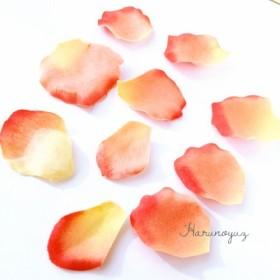 ローズフラワーの花びら サーモンオレンジ/10枚