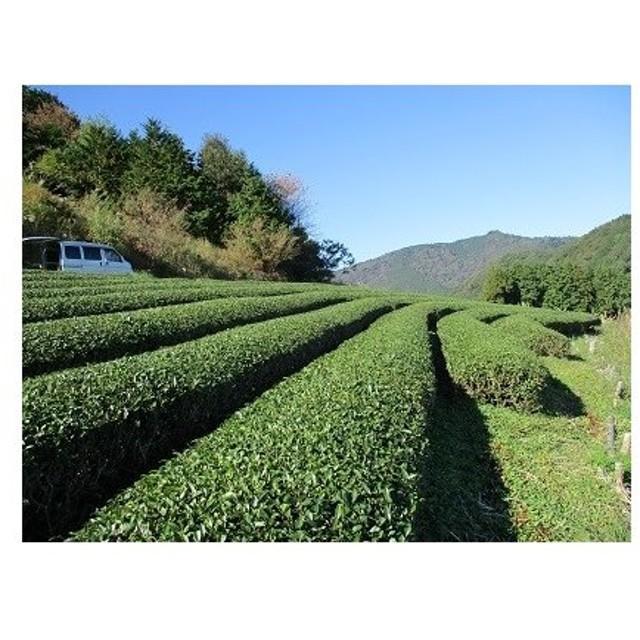 農薬・肥料不使用 自然と人をつなぐお茶 静岡県産 紅茶 70g