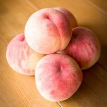 渡辺果樹園の桃 3kg