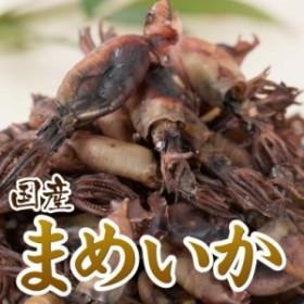 イカの煮干し【業務用】お得な珍味イカの煮干し「豆いか」旨味ギューっと凝縮珍味!160g☆