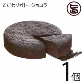 あそりんどう こだわりガトーショコラ 直径約15cm(330g)×1個 熊本 九州 阿蘇 濃厚 ケーキ 人気 復興支援 条件付き送料無料