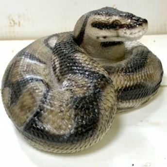 ペットバンク ボールパイソン 貯金箱 大きい 蛇 ヘビ 置物