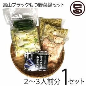 サンフーズ 富山ブラック もつ野菜鍋セット 〆らーめん入 2~3人前×1セット 麺家いろは監修 ブラックスープ 条件付き送料無料