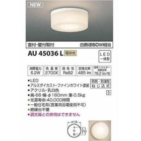 コイズミ LED防雨ブラケット AU45036L 【設置工事不可】