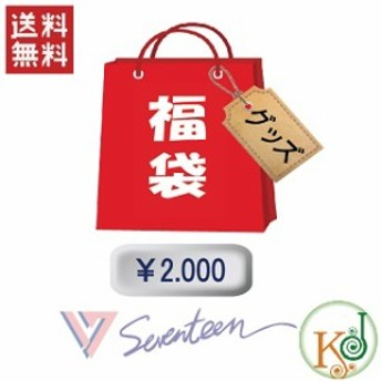 【K-POP・韓流】 SEVENTEEN 福袋 2000円★グッズセット福袋/ 韓流グッズセット セブチ(hb70180316-31)