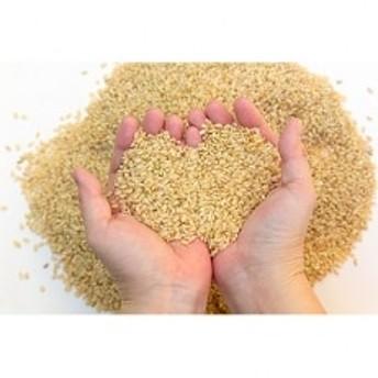 【令和元年産】新米 紀州ふるさと ひのひかり 玄米20kg(10kg×2袋)