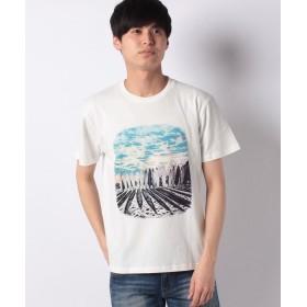 【50%OFF】 コムサイズム 半袖 フォトプリント Tシャツ ユニセックス 生成 L 【COMME CA ISM】 【セール開催中】