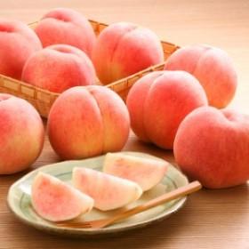 【送料無料】訳あり山形県産白桃 約2kg(玉数おまかせ)※8月下旬から出荷予定