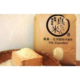 農薬・化学肥料不使用 真ちゃん米 10kg