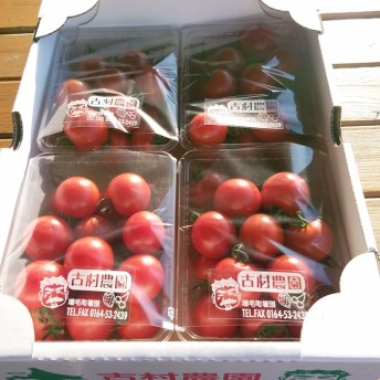 古村農園のフルーツトマト(C)
