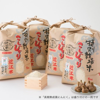 特別栽培米コシヒカリB (頒布会12カ月)(年12回定期便)