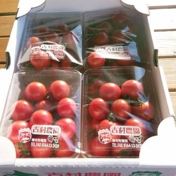 古村農園のフルーツトマト(A)