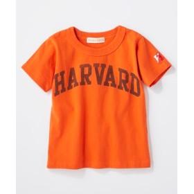 HARVARD カレッジプリントTシャツ キッズ オレンジ