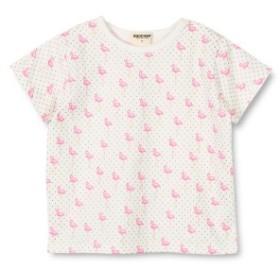 ブランシェス(branshes)/フラミンゴ半袖Tシャツ