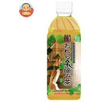 【送料無料】廣貫堂 おわら桑摘み茶 500mlペットボトル×24本入