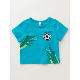 【ANGELIEBE/エンジェリーベ】【BIT'Z】アニマルプリントTシャツ ターコイズブルー 90