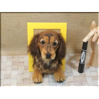 羊毛フェルト 犬 ダックスフントのフレーム ダックス
