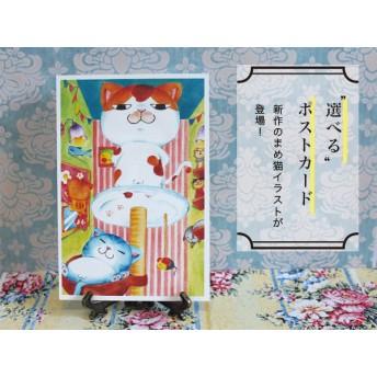 猫ポストカード第2弾 好きなの2枚選べる!