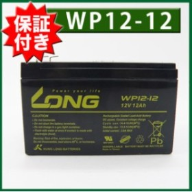 UPS・溶接機 各種(12V12Ah)WP12-12 バッテリー UPS BKPro500 APC Smart-UPS1000 SU1000J SUA1000J SUA1000JB